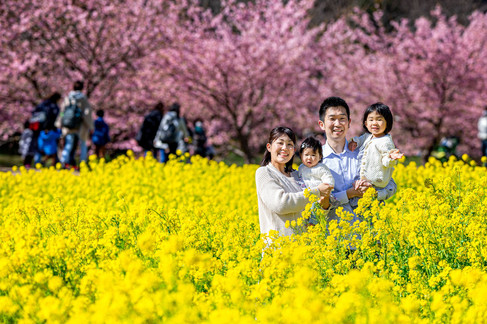 sakura-family-location-photo-080.jpg