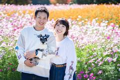 cosmos-hamanako-gardenpark-couple-locati