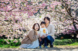 sakura-family-location-photo-102.jpg