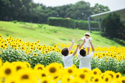 himawari-hamanako-gardenpark-family-loca