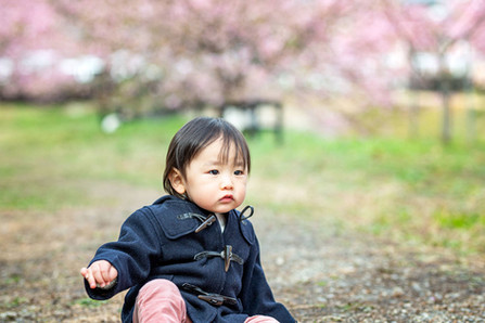 sakura-family-location-photo-049.jpg