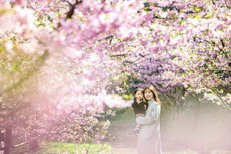sakura-family-location-photo-046.jpg