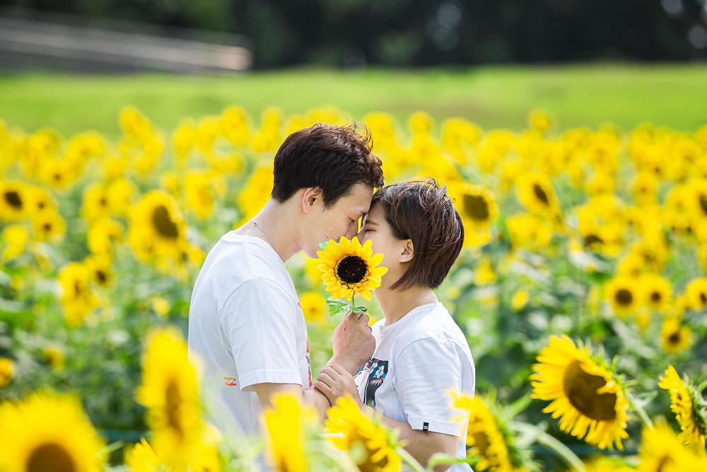 浜名湖ガーデンパークのひまわり畑で浜松のカメラマンが撮影した夏のカップルフォト