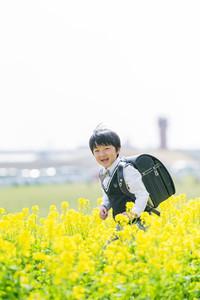 入学記念に撮影した菜の花ロケーションフォト