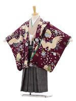 shichigosan-kimono-009.jpg