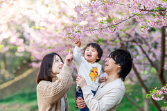 sakura-family-location-photo-107.jpg