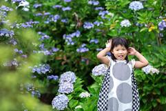 ajisai-hamanako-gardenpark-family-locati