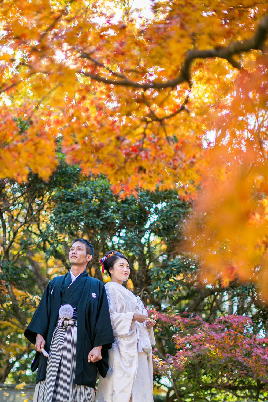 浜松城公園で紅葉の時期に撮影した和装での結婚式前撮り写真