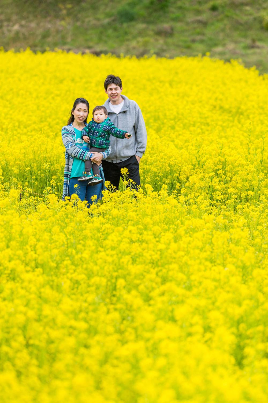 浜松市東大山の菜の花畑で撮影したファミリーフォト