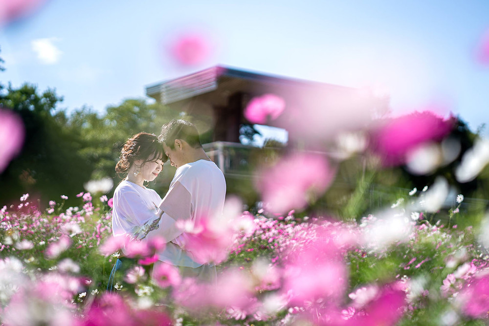 浜松市のカメラマンが撮影した浜名湖ガーデンパークのコスモス畑でのカップルフォト