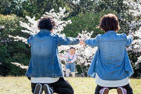 sakura-family-location-photo-141.jpg