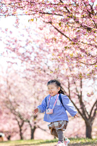 sakura-family-location-photo-075.jpg