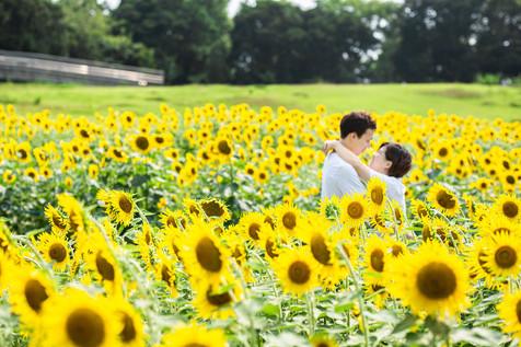 himawari-hamanako-gardenpark-couple-loca