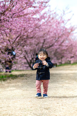 sakura-family-location-photo-063.jpg
