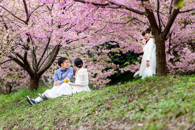 hamamatsu-sakura-wedding-location-photo-