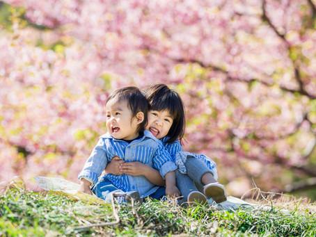 「桜&菜の花 撮影会」のお知らせ
