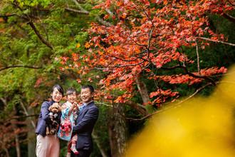 okunijinja-shichigosan-pet-family-locati