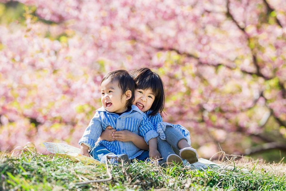 浜松の桜ロケーションで撮影した仲良し兄弟フォト