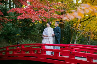 小國神社の太鼓橋で紅葉の時期に撮影した結婚式前撮り写真
