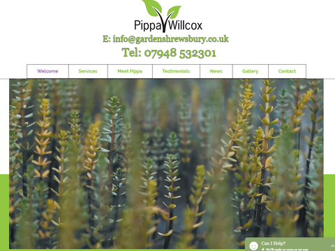 Working with Debbie has been brilliant. She understood exactly what I wanted and made the whole process enjoyable. I'm so glad I found Debbie. I highly recommend her services.  Pippa Wilcox - Garden Design Shrewsbury