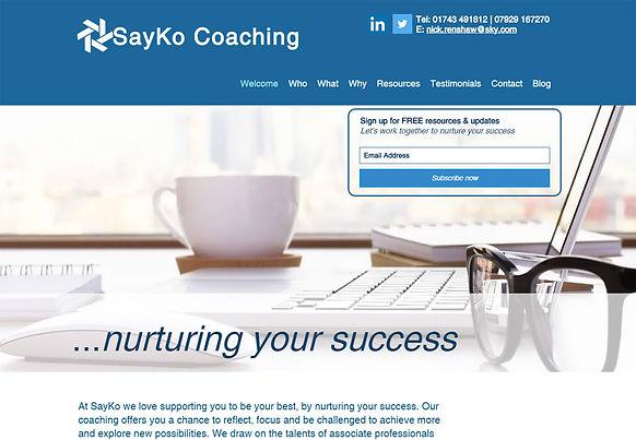 sayko-coaching.jpg