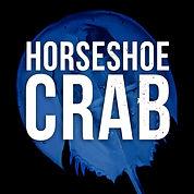 HorseshoeCrab-button.jpg