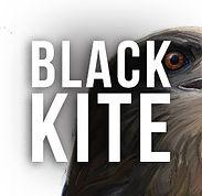 Black-Kite-button.jpg