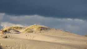 Artiste de l'éphémère, la Baie de Somme et ses dunes du littoral sur la Route Blanche
