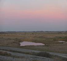Les marais de la réserve naturelle du Hâble d'Ault au sud de la Baie de Somme au crépuscule