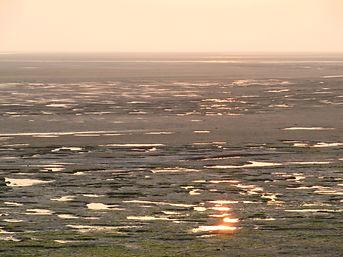 Artiste de l'éphémère, la Baie de Somme invite à la passion nature avec ses couleurs et ses lumières à marée basse au Hourdel