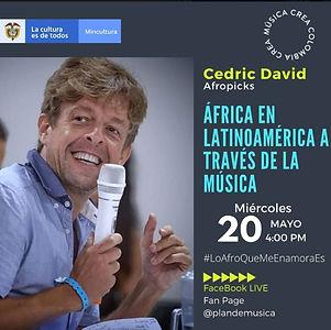 CEDRIC DAVID.jpg