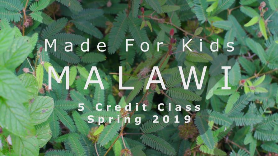 Malawi_1.PNG