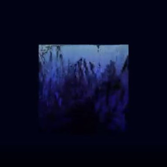 TD - Reflections in Water