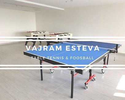 Vajram Esteva Table Tennis & Foosball.jp