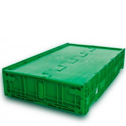 Caja de Plástico Con Tapa de Bisagras Guadalajara Baja