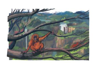 Orang outan en emporte le vent