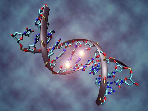 Las afecciones relacionadas con el autismo convergen en la misma pérdida de etiquetas de ADN