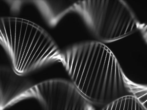El análisis que combina variantes y condiciones descubre cientos de genes de desarrollo neurológico