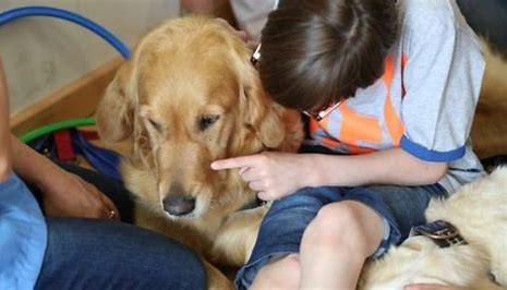 Perro de asistencia para el autismo: 10 formas en las que pueden ayudar a tu hijo con TEA a dormir
