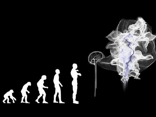 ¿Tiene el autismo la clave de lo que hace a los humanos especiales?