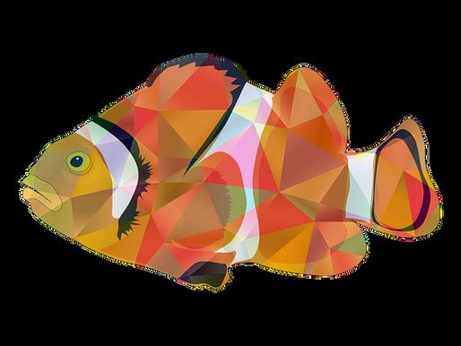 """El síndrome """"del pez fuera del agua"""""""