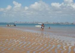 internauta-flagra-tubarao-em-areia-vermelha-veja-video.jpg.280x200_q85_crop.jpg