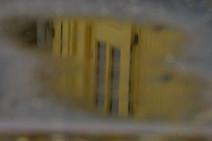 IMGP8147.JPG