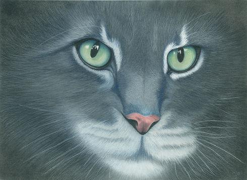 Jowellyn Neville BLACK CAT CLOSEUP.jpg