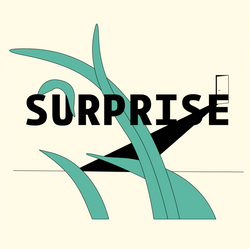 surprise_cover_image