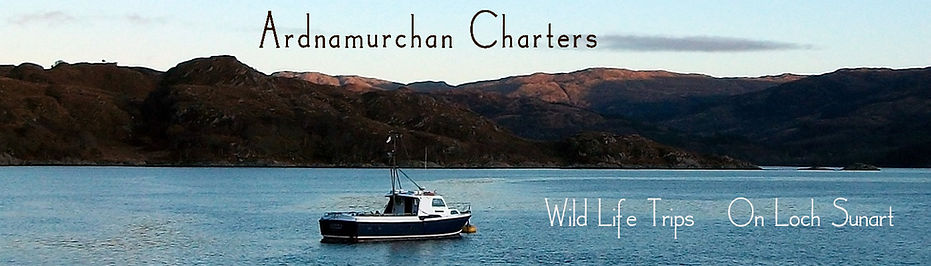 Ardnamurchan Charters great tours at reasonable prices