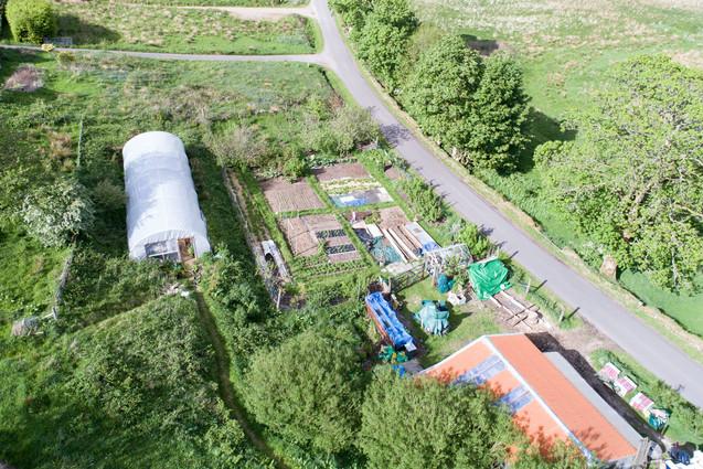 Polytunnel and Veg Garden