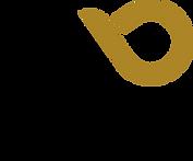 NAYVU logo@2x.png