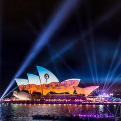 Chameleon Light Up Australia Day 2021