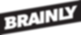 brainly logo.png